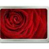 Gürtelschnalle mit dem Motiv einer Rosenblüte