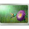Gürtelschnalle mit Foto eines Kolibri vor einer Blume